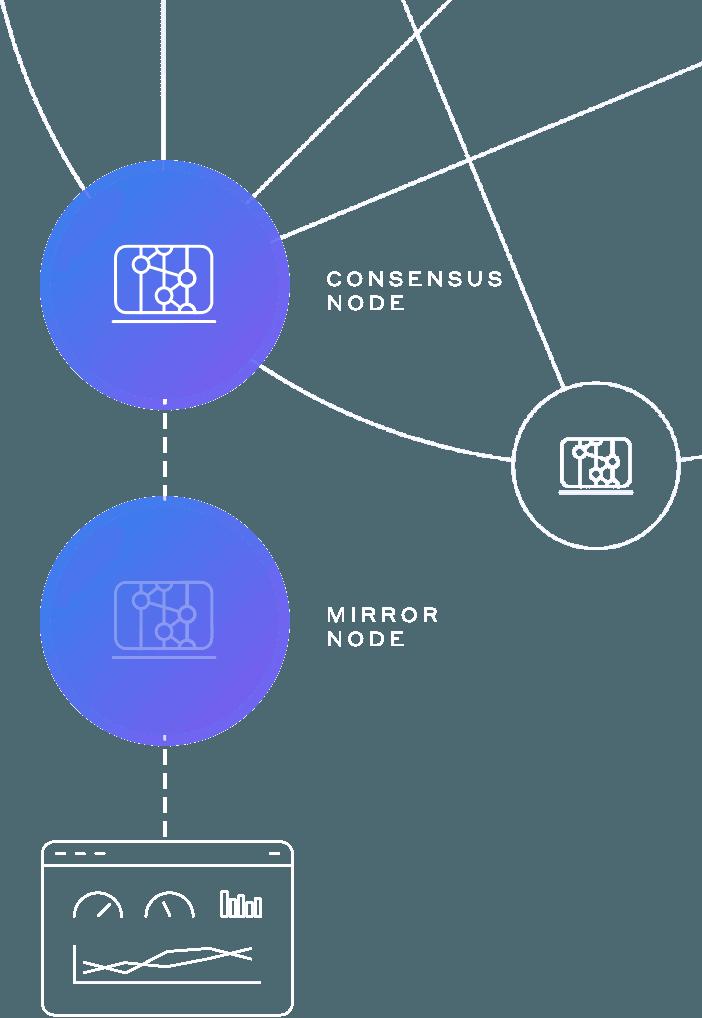 HH Network Nodes Graphic Mirror Nodes Mobile