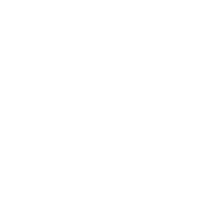 Icon Identity And Authentication