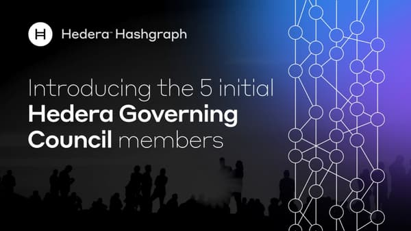 Introducing The 5 Initial Hedera Governing Council Members