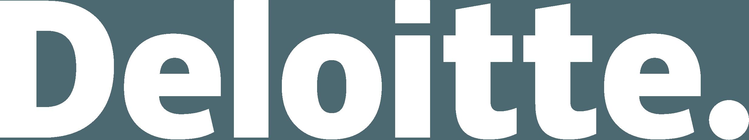 USERS Deloitte