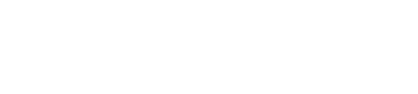 Diamondstandard Logo White